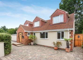 Thumbnail 3 bed detached house to rent in King Edwards Road, Ascot, Berkshire