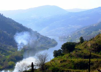 Thumbnail 5 bed farmhouse for sale in Douro, Vila Real, Norte, Portugal