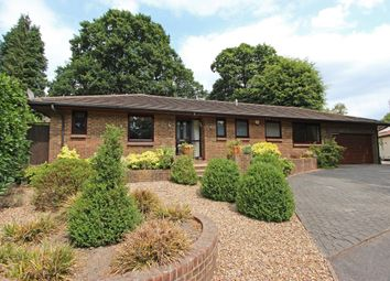 Thumbnail 3 bed detached bungalow for sale in Silver Close, Kingswood, Tadworth