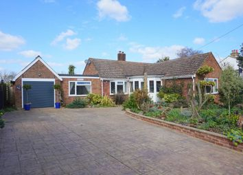 Thumbnail 4 bed detached bungalow for sale in Grove Hill, Belstead