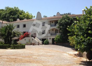 Thumbnail 9 bed finca for sale in Colares, Colares, Sintra