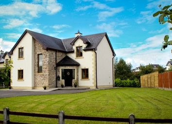 Thumbnail 4 bed detached house for sale in 14 Cnoc Na Si, Carrick-On-Shannon, Leitrim