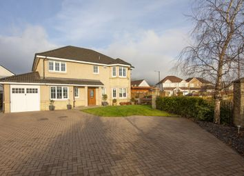 Thumbnail 5 bed detached house for sale in Birch Grove, Menstrie