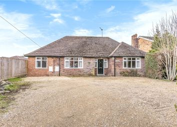Thumbnail 4 bedroom bungalow for sale in Lovel Road, Winkfield, Windsor