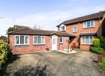 Thumbnail 4 bedroom detached house for sale in Barbers Hill, Werrington, Peterborough