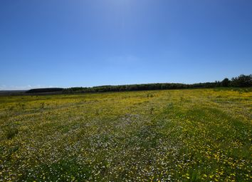 Thumbnail Land for sale in Battery Road, Wick