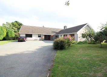 Thumbnail 4 bed detached bungalow to rent in Narberth Road, Haverfordwest, Pembrokeshire.