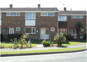 Thumbnail 3 bed terraced house to rent in Link Road, Canvey Island
