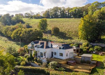 Thumbnail 4 bed detached house for sale in Ivy Tree Hill, Stokeinteignhead, Newton Abbot