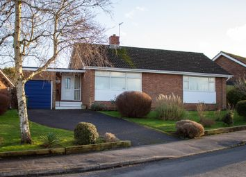 Thumbnail 2 bed detached bungalow for sale in Oak Hill, Alresford