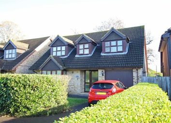 Thumbnail 4 bed property for sale in Larkshill Close, New Milton