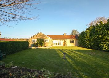 Thumbnail 4 bed detached bungalow for sale in The Orchard, Draycott Road, Cheddar, Somerset