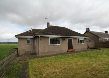 Thumbnail 3 bed detached bungalow to rent in Nyadd Farm, Blairdrummond