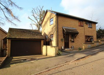 Thumbnail 4 bed detached house for sale in Blakeney Close, Norwich