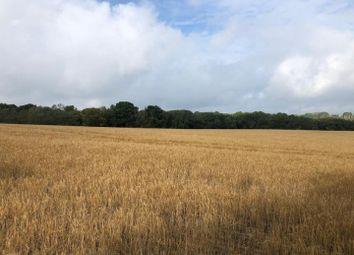 Cranbrook Road, Benenden, Cranbrook TN17. Land for sale