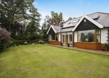 Thumbnail 4 bedroom bungalow for sale in Garstang Road, Barton, Preston, Lancashire