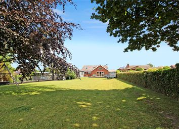 Thumbnail 4 bed detached bungalow for sale in Back Road, Wenhaston, Suffolk