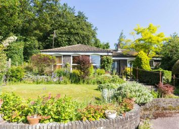 Thumbnail 4 bedroom detached bungalow for sale in Meadow Close, Bridge, Canterbury