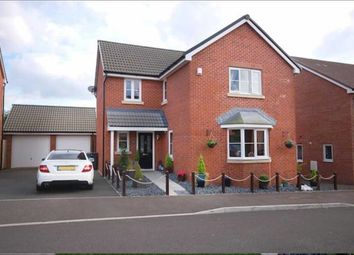Thumbnail 4 bed detached house for sale in Cromwell Close, Newtown
