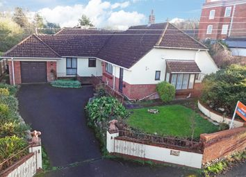 4 bed detached bungalow for sale in Old Ebford Lane, Ebford, Exeter EX3