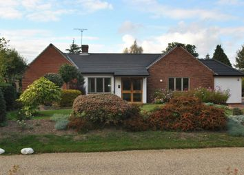 Thumbnail 4 bed detached bungalow to rent in South Walk, Thorpe End, Norwich