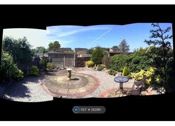 Thumbnail 3 bed semi-detached house to rent in Alder Grove, Lytham