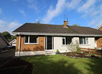 Thumbnail 3 bedroom bungalow to rent in Portmore Avenue, Ballinderry Upper, Lisburn
