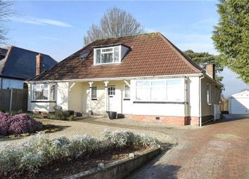 Thumbnail 3 bed detached bungalow to rent in West Coker Road, Yeovil, Somerset