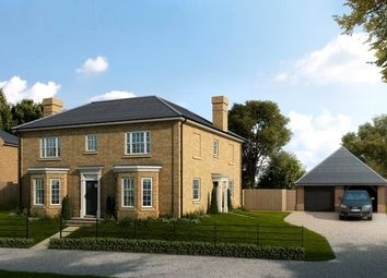 Thumbnail 4 bed detached house for sale in Chelmsford Road, Purleigh, Chelmsford, Essex