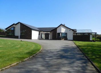 Thumbnail 4 bed detached bungalow for sale in Badger Den, Ballyroe, Blackwater, Wexford County, Leinster, Ireland