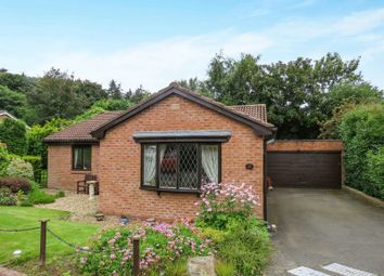Thumbnail 3 bed bungalow for sale in Springfield Park, Alnwick