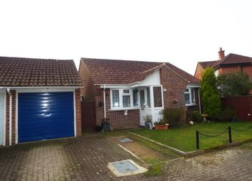 Thumbnail 2 bed bungalow for sale in The Linnets, Fareham