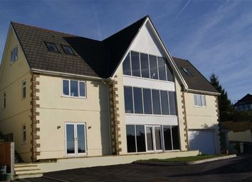 Thumbnail 5 bedroom detached house for sale in Porthyrhyd, Carmarthen