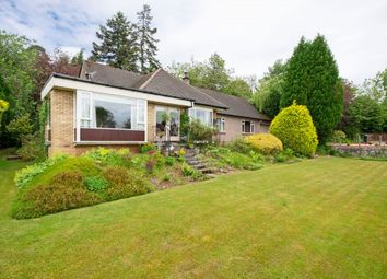 Thumbnail 4 bed detached house for sale in Marlybank, Almondbank, Perth