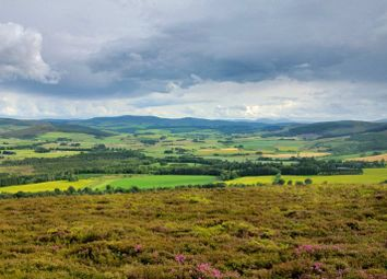 Thumbnail Land for sale in (Lot 4 Craig Castle Estate), Rhynie, Huntly, Aberdeenshire