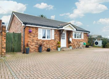 Thumbnail 2 bed bungalow for sale in Duck End, Birchanger, Bishop's Stortford