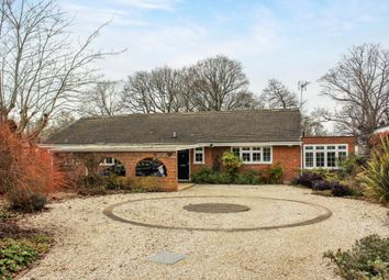 Thumbnail 4 bed detached bungalow for sale in South Lane, Ash