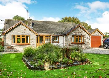 Thumbnail 3 bed bungalow for sale in Clawton, Holsworthy