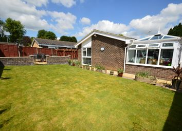 Thumbnail 3 bed detached bungalow for sale in Ramsey Close, Ipswich