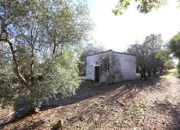 Thumbnail Land for sale in Contrada Guappi Falghero, Ostuni, Brindisi, Puglia, Italy