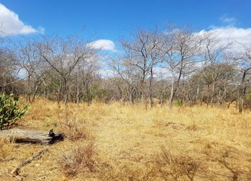 Thumbnail Land for sale in 17 Moria, 17 Moria, Moria, Hoedspruit, Limpopo Province, South Africa