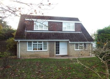 Thumbnail 4 bed detached house to rent in Teagle Close, Wells