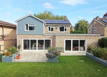Thumbnail 4 bed detached house to rent in Topcliffe Way, Cambridge