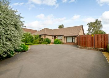 Thumbnail 5 bed detached bungalow for sale in Kirkland Road, Dumfries, Dumfries And Galloway