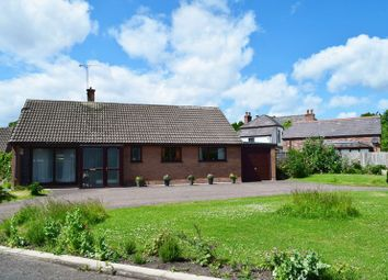 Thumbnail 3 bed detached bungalow for sale in Meadowcroft, Saughall, Chester