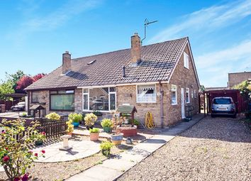 Thumbnail 3 bed bungalow for sale in Chestnut Drive, Gilberdyke, Brough