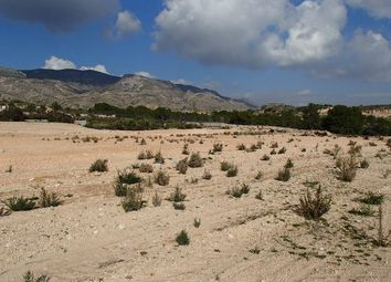 Thumbnail Land for sale in Crevillente, Alicante (Inland)