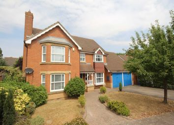 Thumbnail 4 bed detached house to rent in Blamire Drive, Binfield, Bracknell