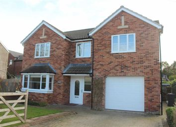 Thumbnail 4 bed detached house for sale in Bracelands Drive, Christchurch, Coleford