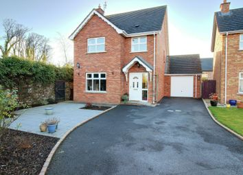 Thumbnail 3 bed detached house for sale in Demesne Drive, Ballywalter